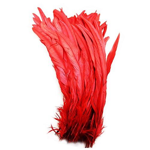everyshine 120mehrfarbig Färbe-lose Hahn Schwanz feathers12–35,6cm ()