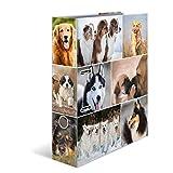 HERMA 7165 Motiv-Ordner DIN A4 Animals Hunde, 7 cm breit aus stabilem Karton mit Tier-Motiv Innendruck, Ringordner, Aktenordner, Briefordner, 1 Ordner