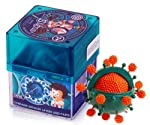 Virus contains detailed sections of a virus which helps the child understand the complete biological structure of it and also learns a lot of its functions through the Guide.