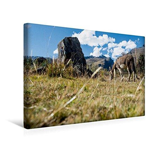 Calvendo Premium Textil-Leinwand 45 cm x 30 cm quer, Bouldern in der Pampa | Wandbild, Bild auf Keilrahmen, Fertigbild auf echter Leinwand, Leinwanddruck Sport Sport
