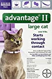 Bayer Advantage II, Large Cat, Over 9-Po...