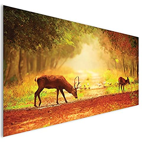 Brown Stag Deer Wildlife Acrylic Glass Wall Art - XL