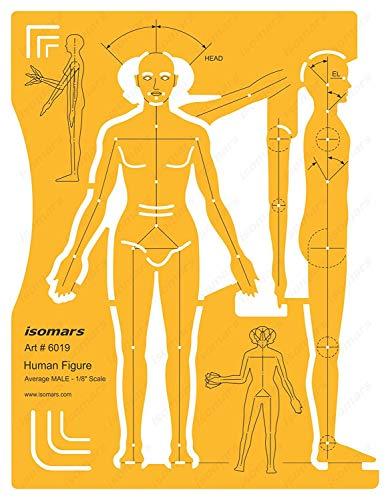 Lehrer Männliche Kostüm - FineArt männliche menschliche Figur Ausarbeitung und Design-Vorlage