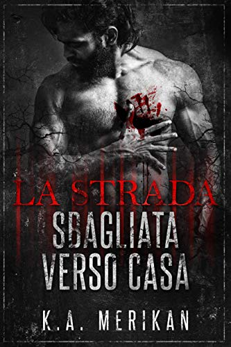 La strada sbagliata verso casa (gay romance) (Italian Edition)