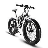 Extrbici Vélo électrique XF800 1000W 48V 13A VTT électrique à Vente Limitée Mondiale Support de Charge USB avec Suspension Complète et LCD Intelligent & Gros Pneu 26 x 4.0 (Noir Blanc)...