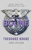 Theodore Boone: Theodore Boone 1