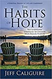 The Habits of Hope: Self-Leadership Strategies to Unleash Your Bigger Purpose