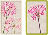 Brücke Spielkarten Bewertung und Vergleich