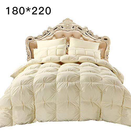 jinclonder Gänsedaunen-Bettwäschekern, 4D Luxurious All Seasons Duvet Insert Waschbar Exquisite Sandwich Pleat Design Double Quilt Core
