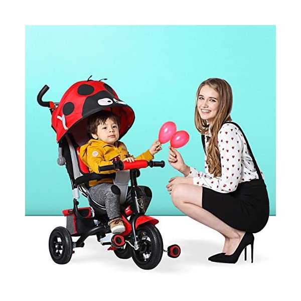 4 In 1 Childrens Tricycles 10 Months To 5 Years Easy To Assemble 3-Point Safety Belt Kids Tricycle Folding Sun Canopy Adjustable Handle Bar Blockable Rear Wheels Child Trike Maximum Weight 25 Kg,Red BGHKFF ★Material: steel + ABS plastic, suitable for children from 10 months to 5 years old, the maximum weight is 25 kg ★ 4 in 1 multi-function: can be converted into a stroller and a tricycle. Remove the hand putter and awning as a tricycle. ★Scientific design features: front footrest, rear storage basket, no need to inflate titanium empty wheel 6
