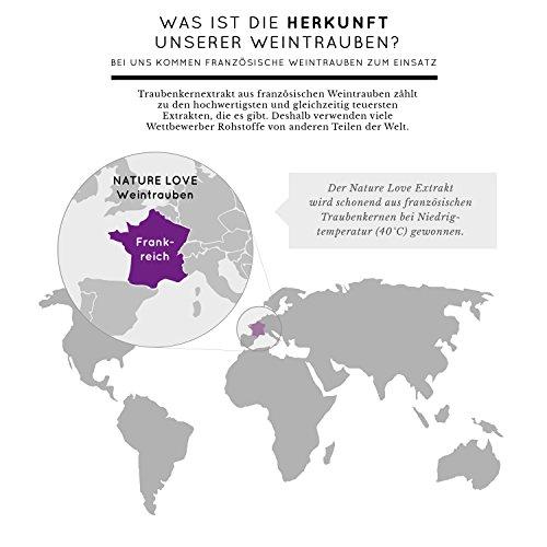 OPC Traubenkernextrakt - 120 Kapseln im 2 Monatsvorrat. Höchste Premium Qualität: Extrakt aus Original französischen Weintrauben. 750mg Extrakt, davon mindestens 300mg reines OPC pro Tagesdosis. Frei von Zusatzstoffen wie Gelatine oder Magnesiumstearat. Hochdosiert, vegan und hergestellt in Deutschland -
