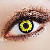 aricona Farblinsen Dämon Kontaktlinsen gelb schwarze 12 Monatslinsen für dein Halloween Kostüm bunte farbige Motiv Jahreslinsen für Cosplay & Fasching