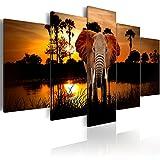 murando - Bilder 225x112 cm Vlies Leinwandbild 5 TLG Kunstdruck modern Wandbilder XXL Wanddekoration Design Wand Bild - Landschaft Afrika Tier Elefant g-C-0024-b-m