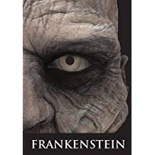 Frankenstein by Mary Shelley (2015-09-08)