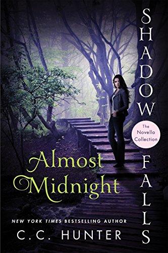 Almost midnight (shadow falls)