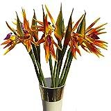 Calcifer 82cm Real Touch Bird of Paradise Bouquet de fleurs artificielles pour maison Décoration de jardin/décoration de fête de mariage, Orange, Package Quantity: 10 Stems