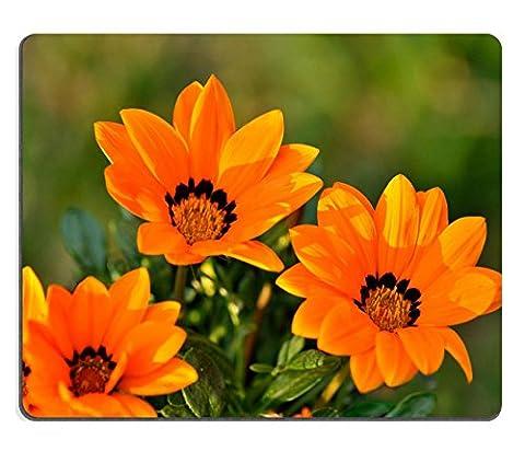 luxlady Gaming Souris en caoutchouc naturel magnifique Orange Graines de