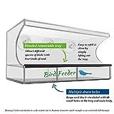 Premium Futterspender Vogel – AnTom Vogelhaus mit Stander mit Abnehmbarem Tablett, Ablasslöcher und 3 Saugnäpfe - Groß, Transparent Vergleich