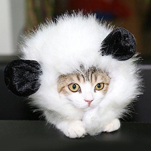 ThinkPet Nette Bequeme Party Festival Kostüm Katze Kitten Lion Mane Perücken Weiß