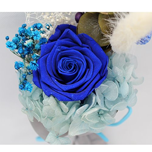 c3721876478 ZJchao Cadeau Femme - Rose éternelle - idée Cadeau Anniversaire ...