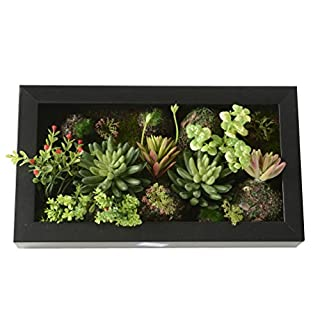 Wandbehang Kunstblumen künstliche Sukkulenten in Quadrat Holzrahmen für Heim Ornament 7,87 * 13,78 Zoll
