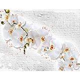 Fototapeten Blumen Orchidee Steinwand 352 x 250 cm - Vlies Wand Tapete Wohnzimmer Schlafzimmer Büro Flur Dekoration Wandbilder XXL Moderne Wanddeko - 100% MADE IN GERMANY - 9323011a