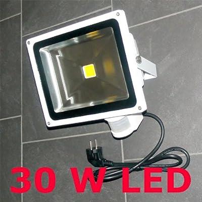30 W LED Fluter Strahler PIR Bewegungsmelder KALTWEISS IP44 von Dyntronic GmbH - Lampenhans.de