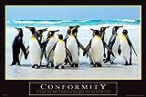 Motivational Conformity Tiere Pinguine Poster - Grösse 61x91,5 cm + 1 Ü-Poster der Grösse 61x91,5cm