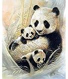 Pintura Diamante Bordado Completo Animal Panda Rubik Cubo Punto De Cruz Diy Hobby Mosaico Imagen 5D Creativo Regalo Decoracion Navidad