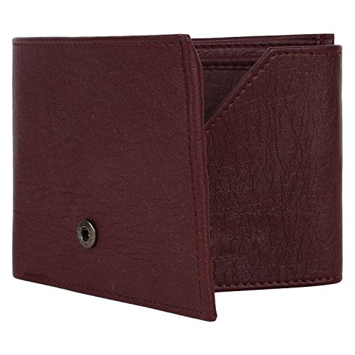 Earton Men Brown-16 Genuine Leather Wallet