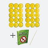 ArtiCasa 30 Citronella Kerzen frischem Zitronen-Duft - Anti Mücken Kerze mit bis zu 5h Brenndauer + Gratis Anzündstab & E-Book -