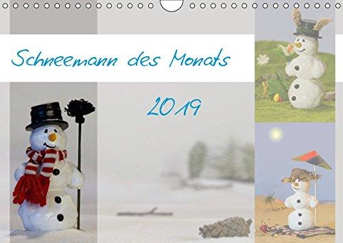 Schneemann des Monats 2019 (Wandkalender 2019 DIN A4 quer): Monatskalender mit 12 coolen Typen (Monatskalender, 14 Seiten ) (CALVENDO Spass)