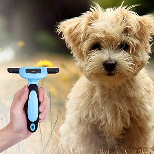 miu-colorr-professional-deshedding-pflegewerkzeug-fur-kurzhaarige-und-mittellanghaarige-hunde-blau