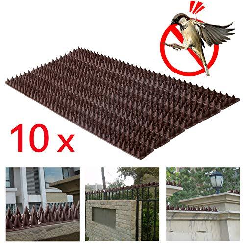 Forever Speed 10 Piezas de 50 cm Pinchos Anti Pajaros y Anti Gatos y Anti Aves Polipropileno Paneles con Pinchos Contra Aves Marrón