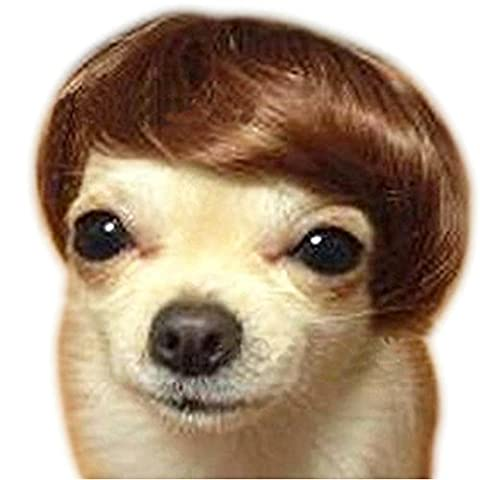 Pet wigs Christmas Halloween costumes Funny puppies Short wigs ( reddish brown ) (One Size)
