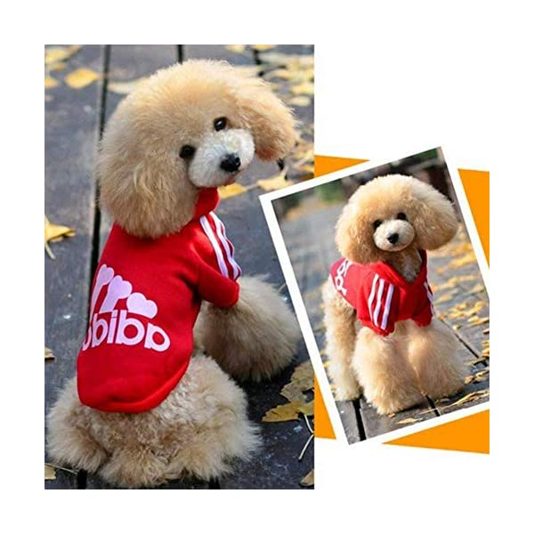 Scheppend Adidog Pet Dog Clothes Winter Coat Jacket Cat Puppy Hoodie Sweaters Cotton Clothing for Small & Medium & Large Dogs 8