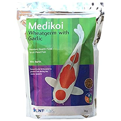 NT Labs Medikoi Wheatgerm with Garlic 1.75kg Pond Fish Pellet Food 1