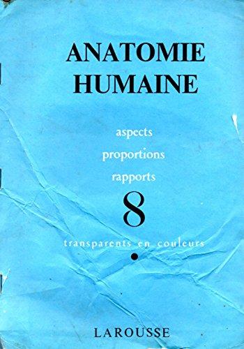 Anatomie humaine-aspects, proportions, rapport 8 transparents en couleurs