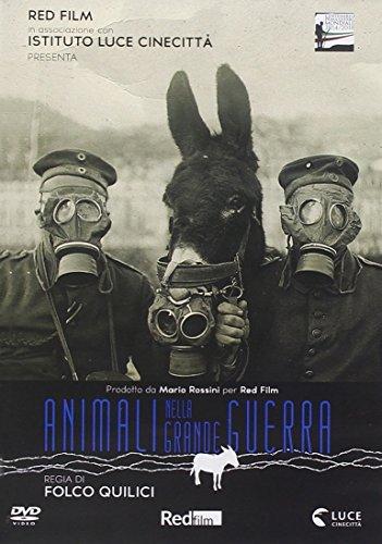 Animali Nella Grande Guerra