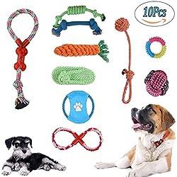 Juguetes para perros Juego de regalo de 10 Paquetes, Perros Para Masticar Juguetes Ayuda Dental Para Pequeñas y Medianas Mascotas Material es no Tóxico e Insípido Durable