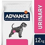 Advance Veterinary Diets Croquettes pour Chien Troubles Urinaires - 12 kg