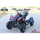 Nitro Quad 2016 Pocketbike Mini ATV 49 cc schwarz Pocket Bike NEU