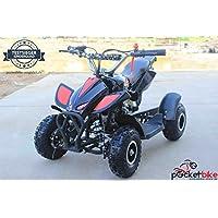 Nitro Quad 2016 Pocketbike Mini ATV 49 cc schwarz Pocket Bike NEU