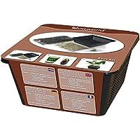 Waterworld Aqua Set - Waterplant Potting Kit