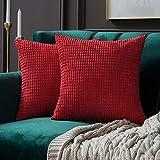 MIULEE Confezione da 2 Federa Granula per Cuscino Fodera Morbido Quadrato Decorativo per Divano Letto Auto in Misto Poliestere 60X60 cm Rosso