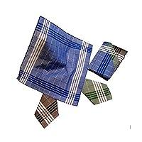 Karl Teichmann® I Werkzakdoeken (Arabias) I Hoogwaardige stoffen zakdoeken I 12 stuks in plastic zak