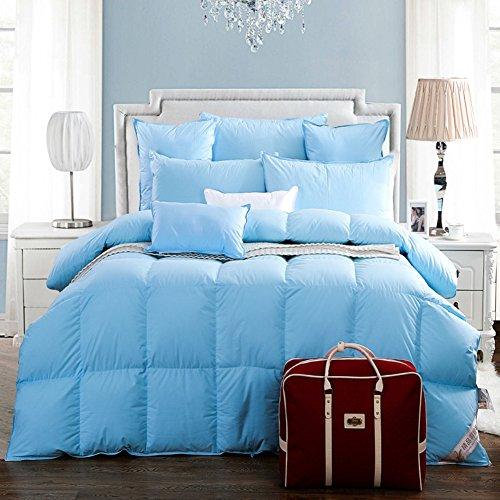 DW&HX Quilt dicke flauschige decke warm und königin daunendecke bettdecke gepolstert, Legen sie weiße ganzjahres weiß unten alternative gesteppt -blau 220x240cm(87x94inch) (Daunendecke Königin Blau)