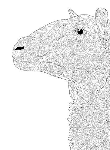 Incontri-ravvicinati-60-disegni-da-colorare-per-vincere-lo-stress