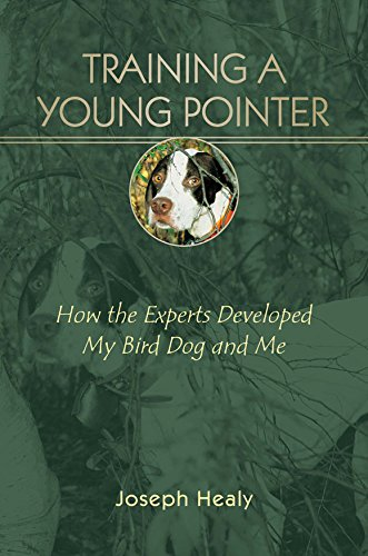 Training a Young Pointer: How Experts Developed My Bird Dog and Me -