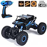 higadget Dirt Drift Waterproof Remote Controlled Rock Crawler RC Monster Truck, 4 Wheel Drive, 1:18 Scale 2.4 Ghz (Random Colour)